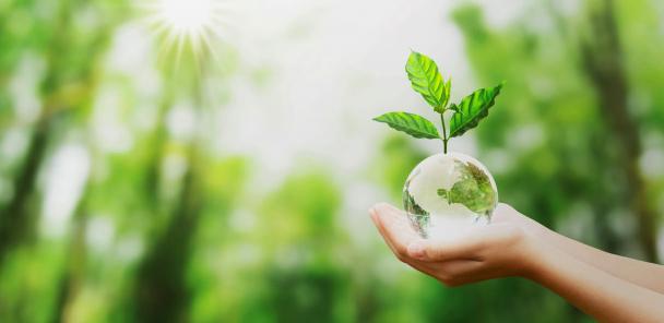 Les tendances pour le business durable pour 2020